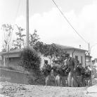 La Banda di Cinquecerri di Ligonchio in marcia – Campagna di ricerca sui Maggi – Costabona 1966 – Foto © Giorgio Vezzani