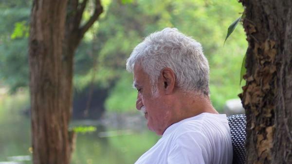 Alberto D'Amico